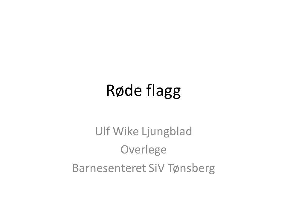 Røde flagg Ulf Wike Ljungblad Overlege Barnesenteret SiV Tønsberg