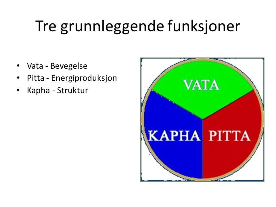 Tre grunnleggende funksjoner • Vata - Bevegelse • Pitta - Energiproduksjon • Kapha - Struktur