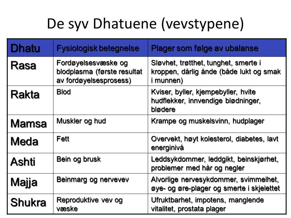 De syv Dhatuene (vevstypene) Dhatu Fysiologisk betegnelse Plager som følge av ubalanse Rasa Fordøyelsesvæske og blodplasma (første resultat av fordøye