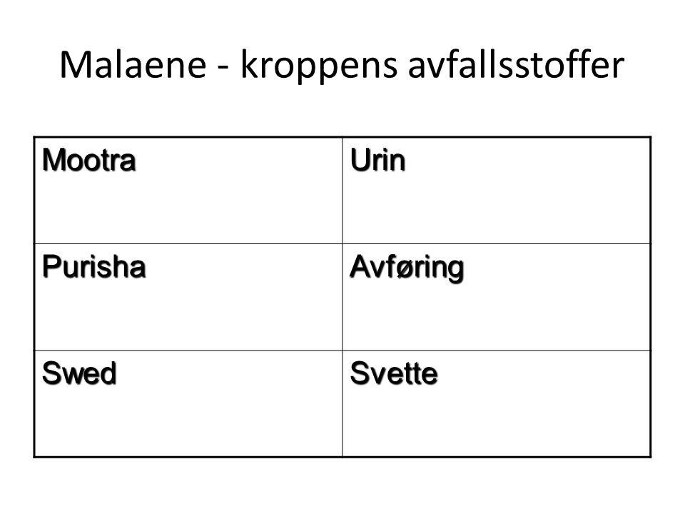 Malaene - kroppens avfallsstoffer MootraUrin PurishaAvføring SwedSvette