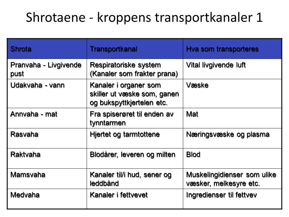 Shrotaene - kroppens transportkanaler 1 ShrotaTransportkanal Hva som transporteres Pranvaha - Livgivende pust Respiratoriske system (Kanaler som frakt