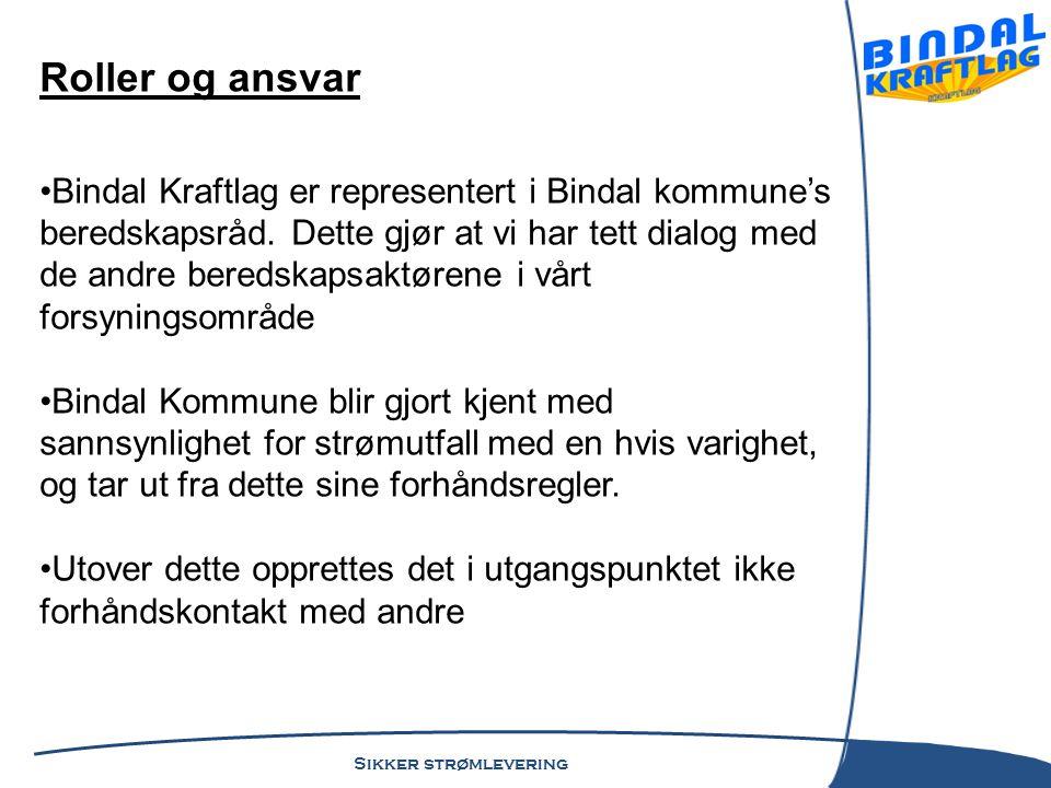 Sikker strømlevering Hendelsesforløp Lørdag 16/11 kl.18.30 kommer første feilmelding.