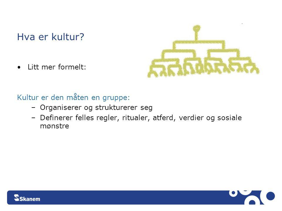 Hva er kultur? •Litt mer formelt: Kultur er den måten en gruppe: –Organiserer og strukturerer seg –Definerer felles regler, ritualer, atferd, verdier
