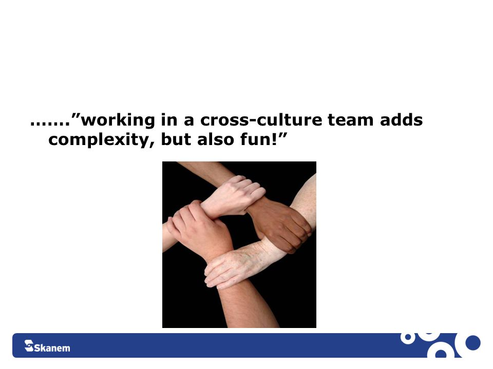 "…….""working in a cross-culture team adds complexity, but also fun!"""