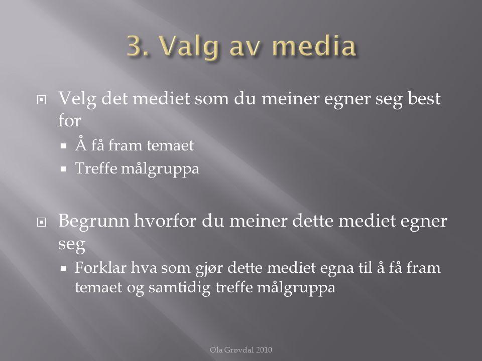  Sett opp en plan over innholdet, punkt for punkt  Beskriv innholdselementene  Knytt innholdet opp mot faglig kunnskap Ola Grøvdal 2010