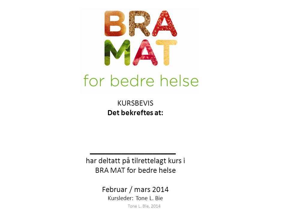 KURSBEVIS Det bekreftes at: ___________ har deltatt på tilrettelagt kurs i BRA MAT for bedre helse Februar / mars 2014 Kursleder: Tone L.