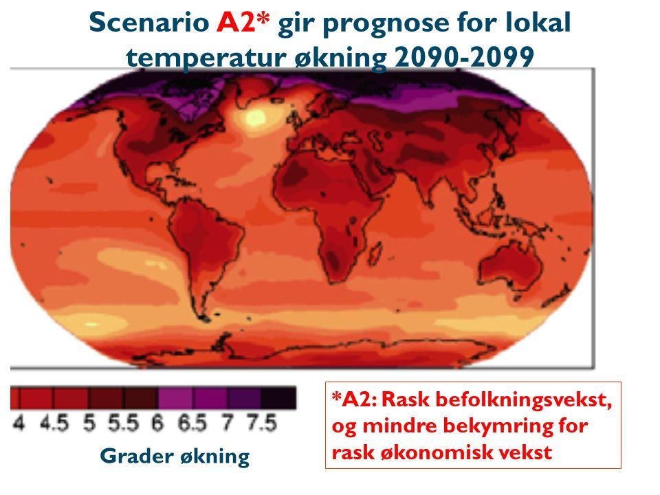 *A2: Rask befolkningsvekst, og mindre bekymring for rask økonomisk vekst Grader økning Scenario A2* gir prognose for lokal temperatur økning 2090-2099