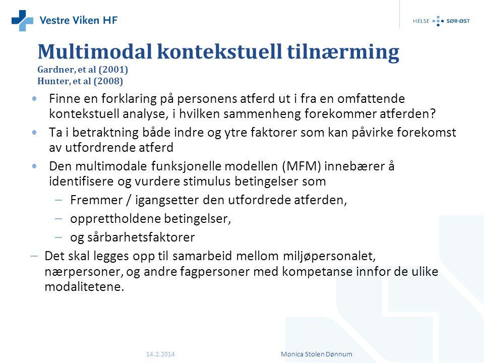 Multimodal kontekstuell tilnærming Gardner, et al (2001) Hunter, et al (2008) •Finne en forklaring på personens atferd ut i fra en omfattende kontekst