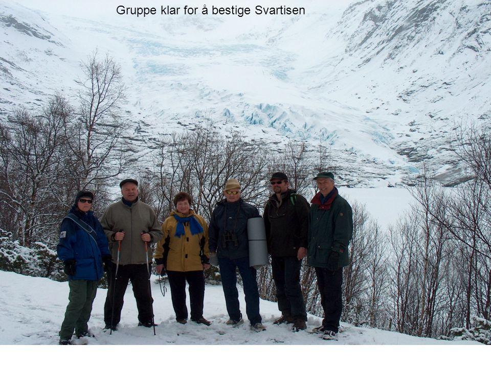 Gruppe klar for å bestige Svartisen