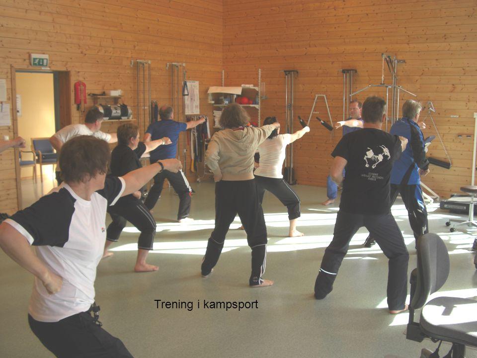 Trening i kampsport