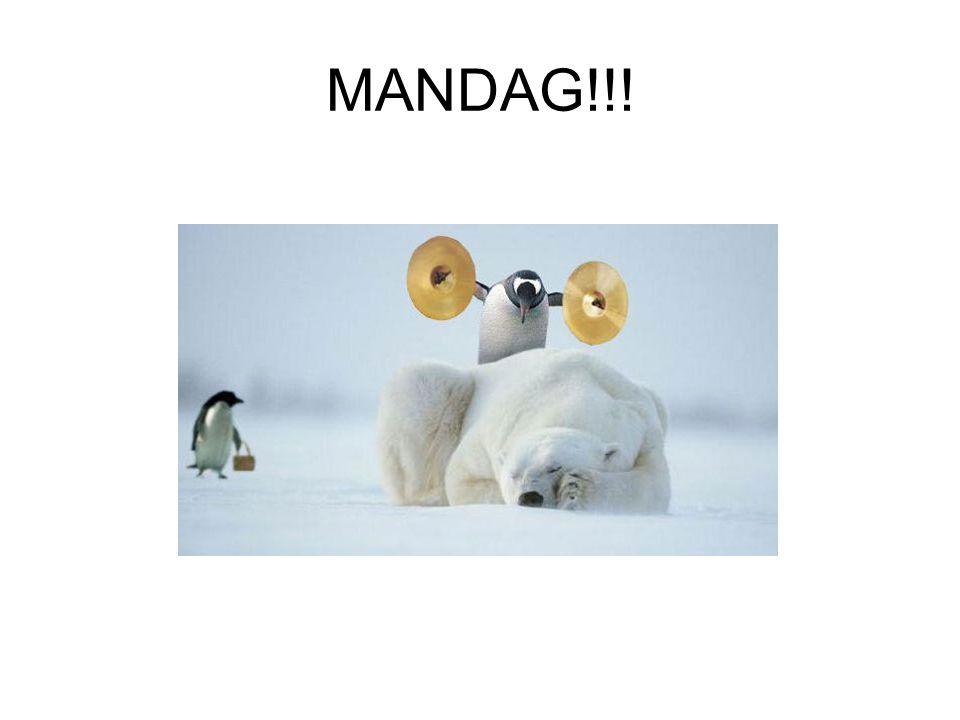 MANDAG!!!