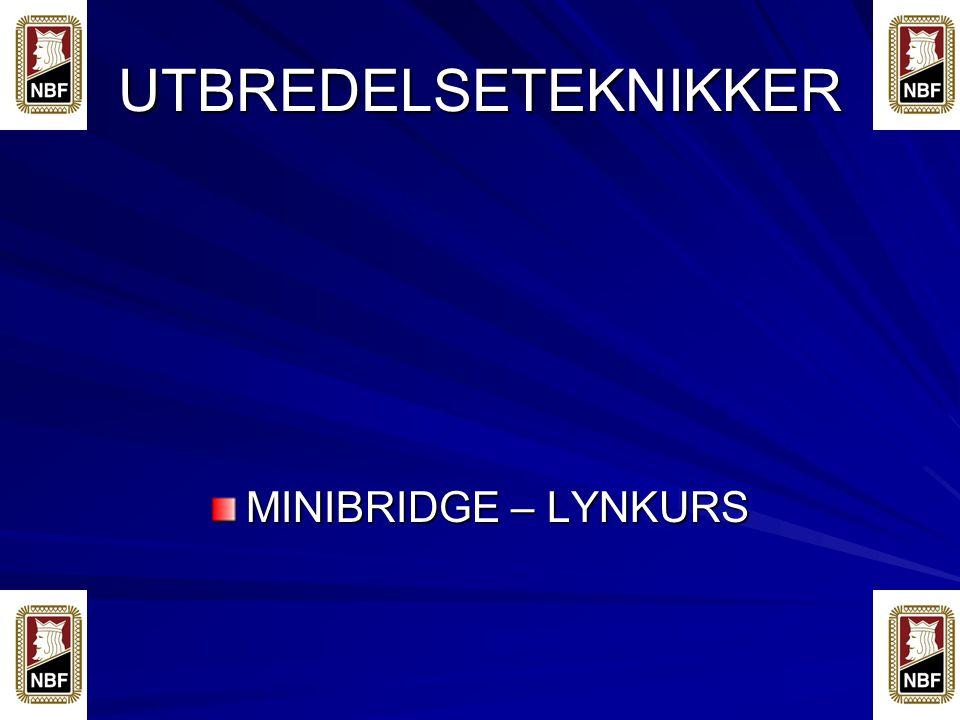 UTBREDELSETEKNIKKER MINIBRIDGE – LYNKURS