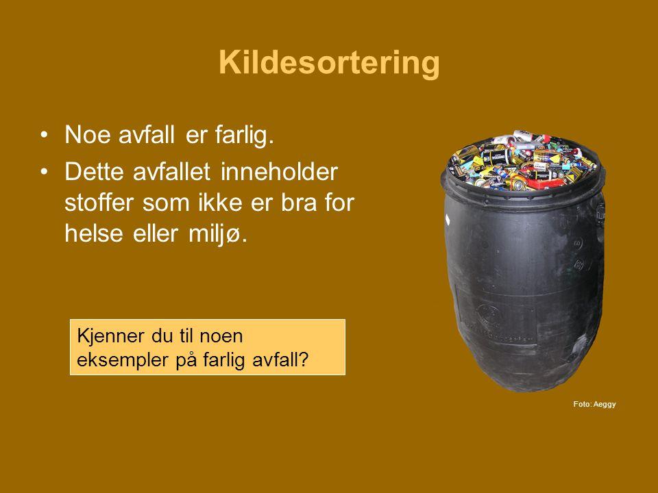 Kildesortering •Noe avfall er farlig. •Dette avfallet inneholder stoffer som ikke er bra for helse eller miljø. Kjenner du til noen eksempler på farli