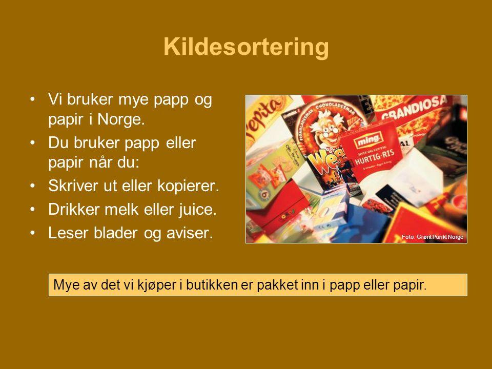 Kildesortering •Vi bruker mye papp og papir i Norge. •Du bruker papp eller papir når du: •Skriver ut eller kopierer. •Drikker melk eller juice. •Leser