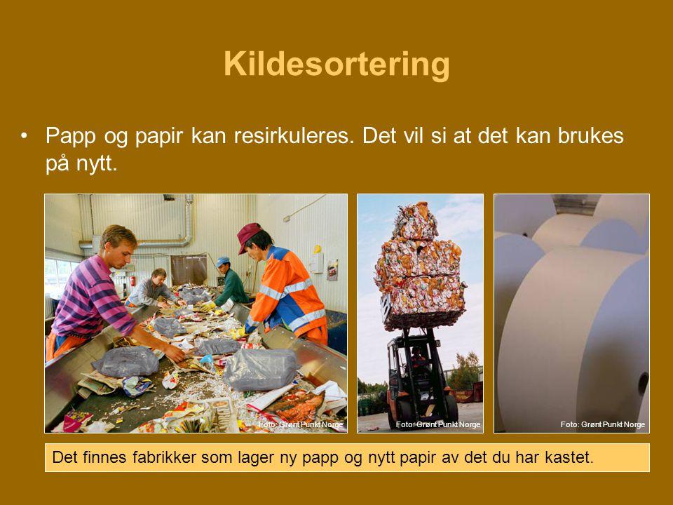 Kildesortering •Papp og papir kan resirkuleres. Det vil si at det kan brukes på nytt. Det finnes fabrikker som lager ny papp og nytt papir av det du h