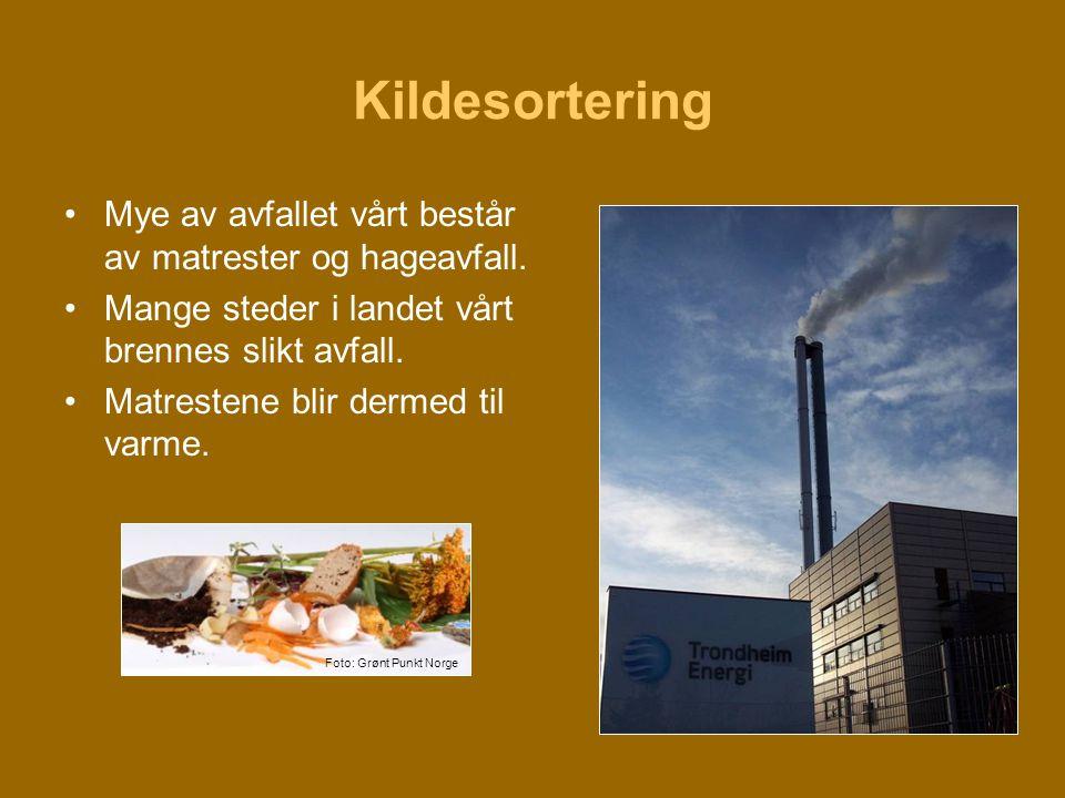 Kildesortering •Mye av avfallet vårt består av matrester og hageavfall. •Mange steder i landet vårt brennes slikt avfall. •Matrestene blir dermed til