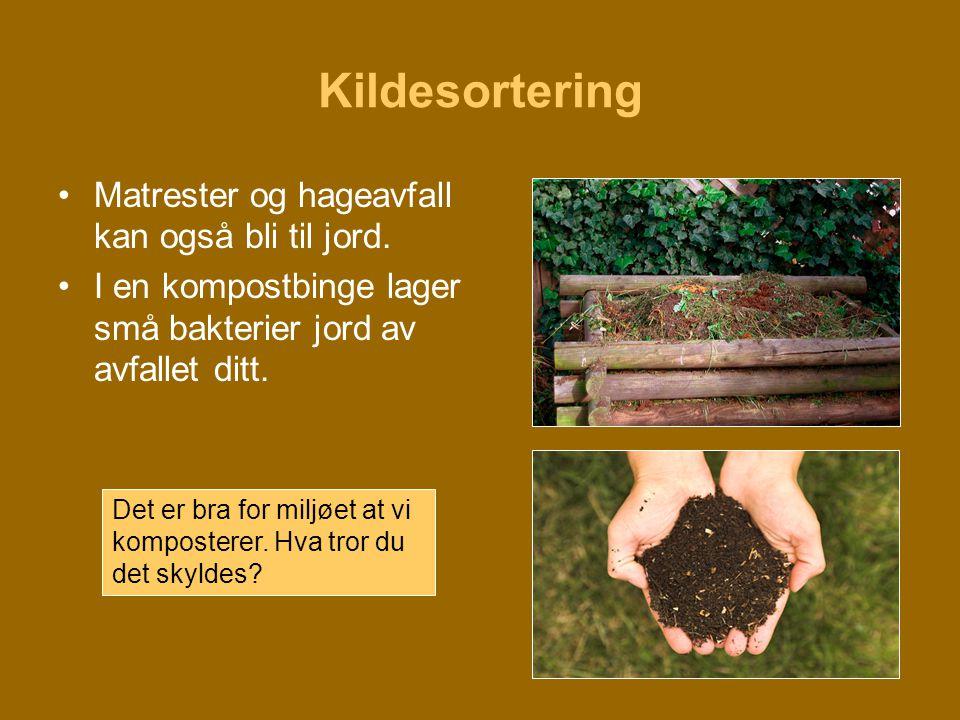 Kildesortering •Matrester og hageavfall kan også bli til jord. •I en kompostbinge lager små bakterier jord av avfallet ditt. Det er bra for miljøet at