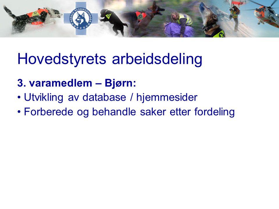 Hovedstyrets arbeidsdeling 3. varamedlem – Bjørn: • Utvikling av database / hjemmesider • Forberede og behandle saker etter fordeling