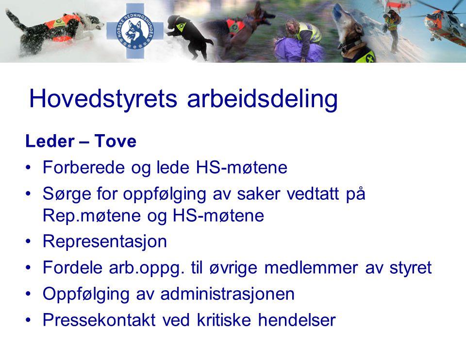 Hovedstyrets arbeidsdeling Nestleder – Olav •Dio-kontakt ved behov •Ivareta henvendelser fra underliggende ledd vedr.