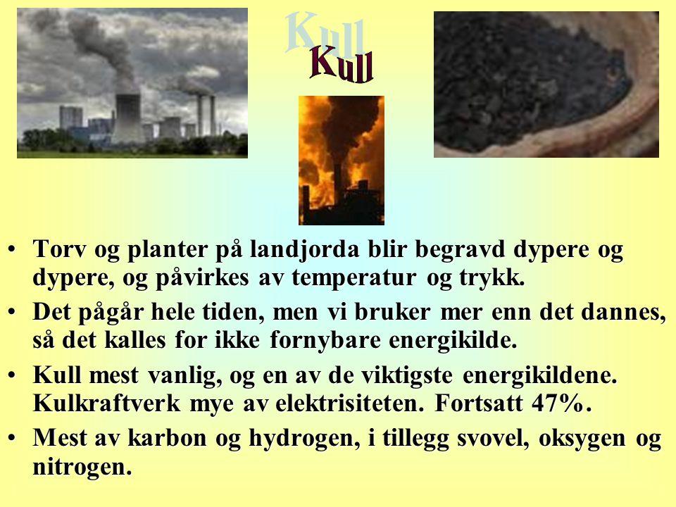 •Torv og planter på landjorda blir begravd dypere og dypere, og påvirkes av temperatur og trykk. •Det pågår hele tiden, men vi bruker mer enn det dann