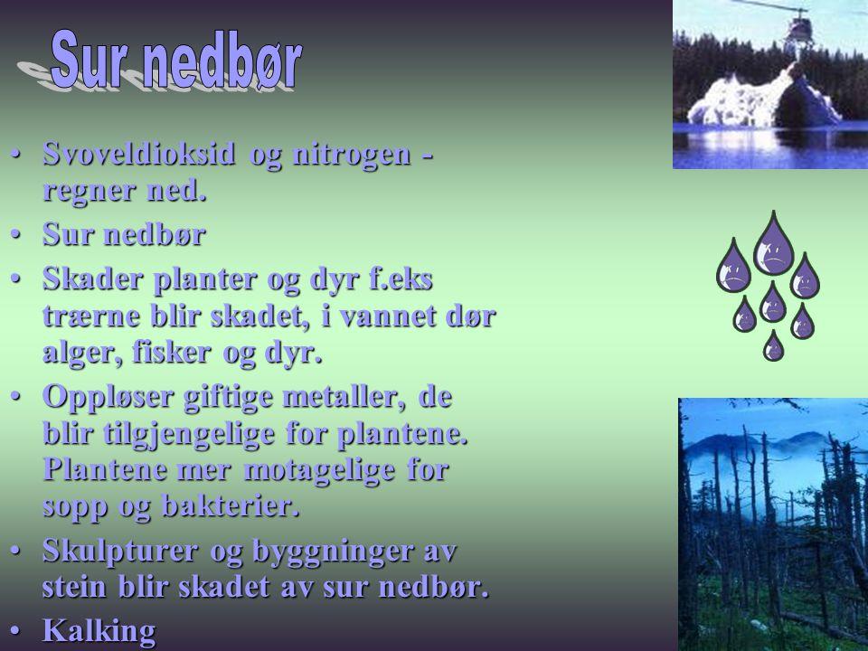 •Svoveldioksid og nitrogen - regner ned. •Sur nedbør •Skader planter og dyr f.eks trærne blir skadet, i vannet dør alger, fisker og dyr. •Oppløser gif