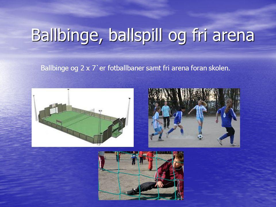 Ballbinge, ballspill og fri arena Ballbinge og 2 x 7`er fotballbaner samt fri arena foran skolen.