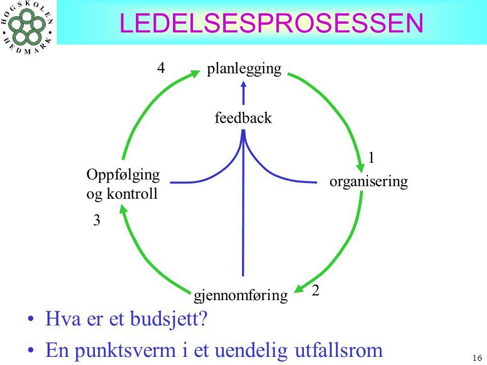 16 LEDELSESPROSESSEN planlegging gjennomføring organisering Oppfølging og kontroll feedback 1 4 3 2 •Hva er et budsjett? •En punktsverm i et uendelig