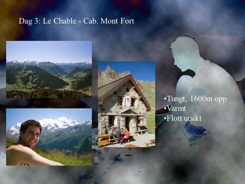 Dag 3: Le Chable - Cab. Mont Fort •Tungt, 1600m opp •Varmt •Flott utsikt