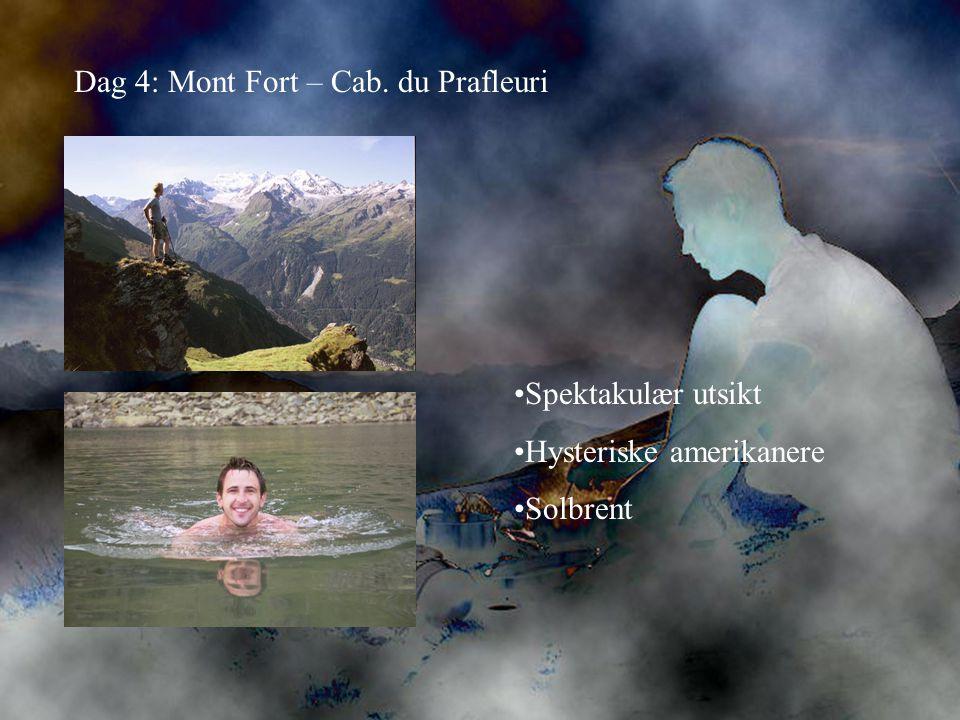 Dag 4: Mont Fort – Cab. du Prafleuri •Spektakulær utsikt •Hysteriske amerikanere •Solbrent