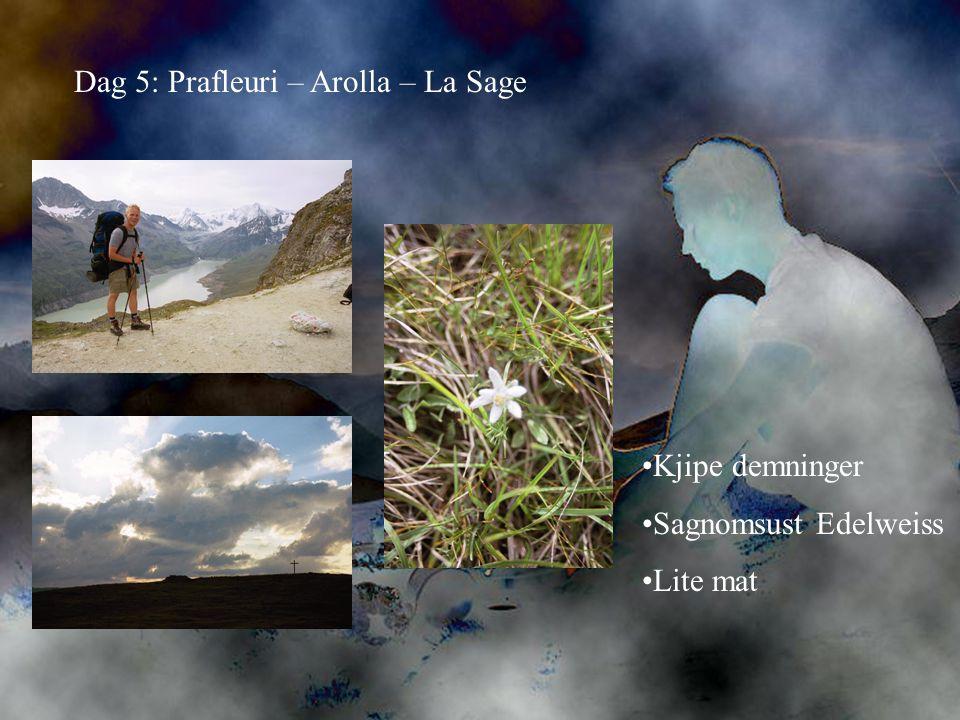 Dag 5: Prafleuri – Arolla – La Sage •Kjipe demninger •Sagnomsust Edelweiss •Lite mat