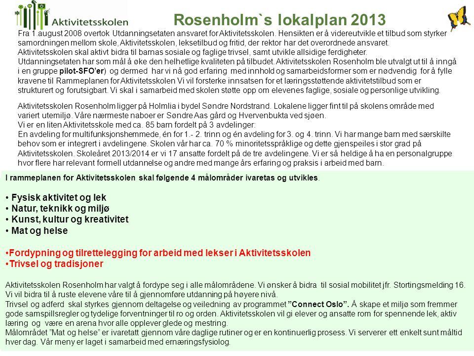 Rosenholm`s lokalplan 2013 Aktivitetsskolen Rosenholm ligger på Holmlia i bydel Søndre Nordstrand. Lokalene ligger fint til på skolens område med vari