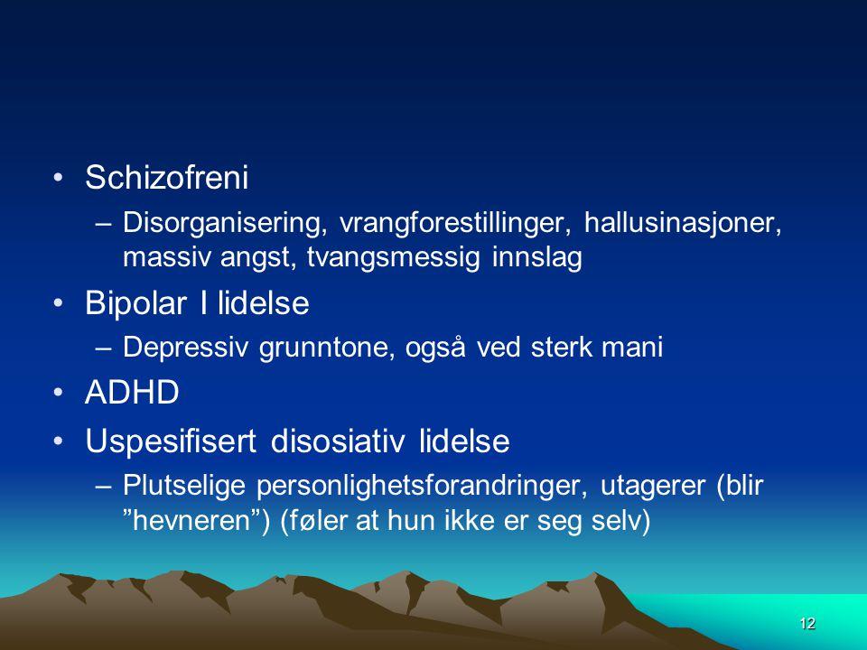 12 •Schizofreni –Disorganisering, vrangforestillinger, hallusinasjoner, massiv angst, tvangsmessig innslag •Bipolar I lidelse –Depressiv grunntone, og