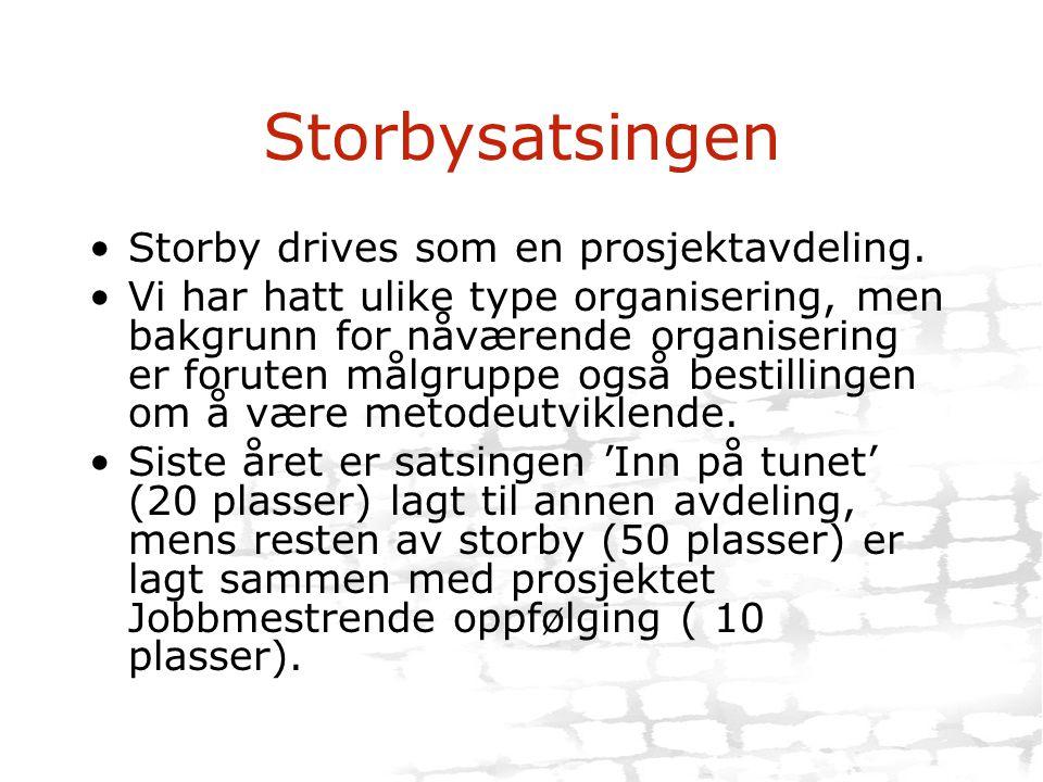 Storbysatsingen •Storby drives som en prosjektavdeling. •Vi har hatt ulike type organisering, men bakgrunn for nåværende organisering er foruten målgr