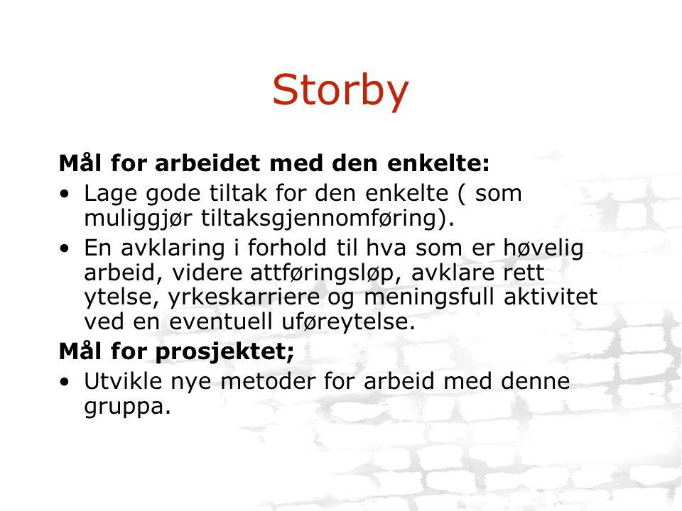 Storby Mål for arbeidet med den enkelte: •Lage gode tiltak for den enkelte ( som muliggjør tiltaksgjennomføring). •En avklaring i forhold til hva som