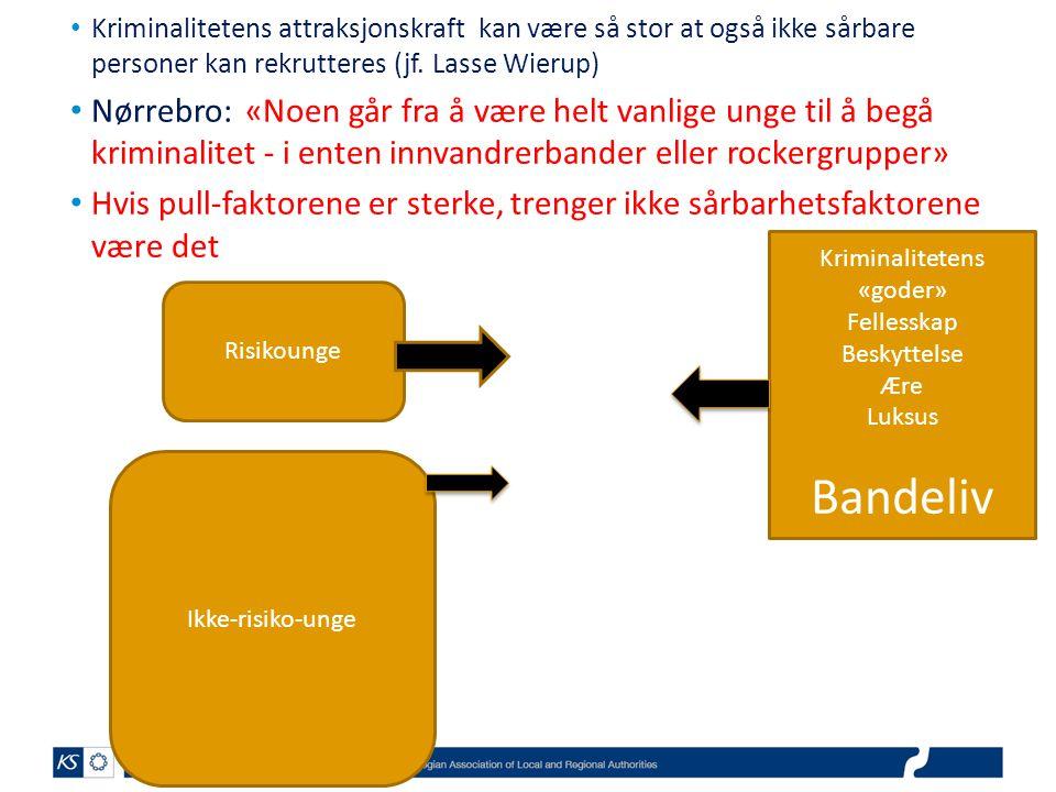 • Kriminalitetens attraksjonskraft kan være så stor at også ikke sårbare personer kan rekrutteres (jf. Lasse Wierup) • Nørrebro: «Noen går fra å være