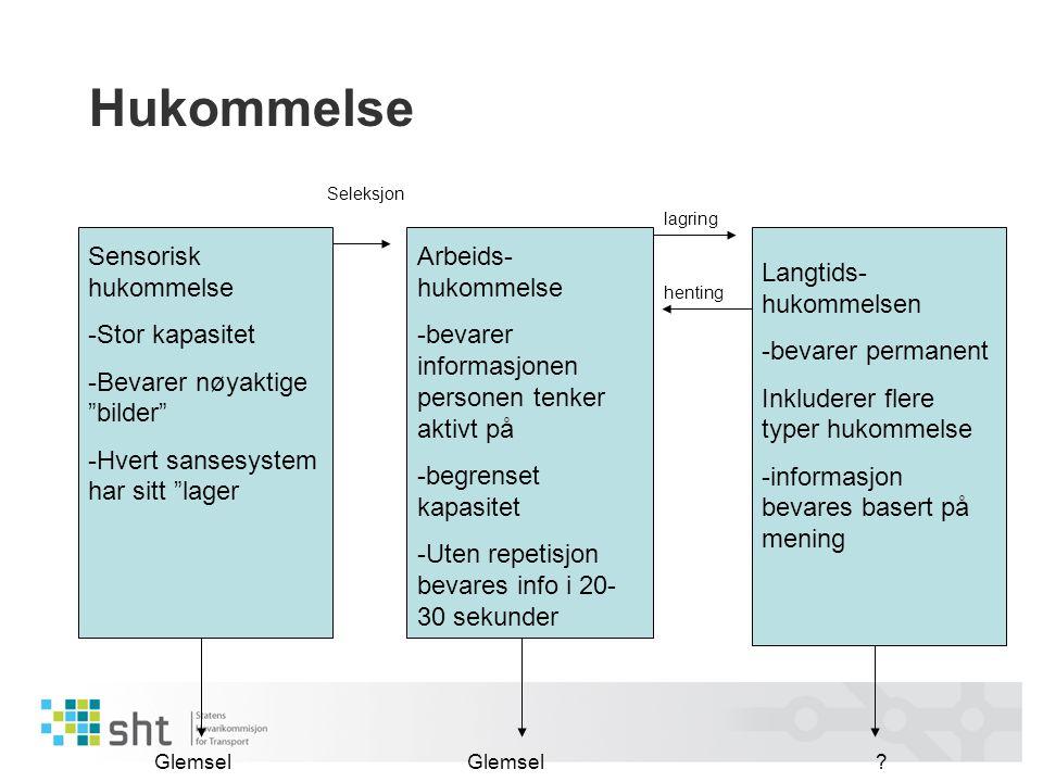 """Hukommelse Sensorisk hukommelse -Stor kapasitet -Bevarer nøyaktige """"bilder"""" -Hvert sansesystem har sitt """"lager Arbeids- hukommelse -bevarer informasjo"""