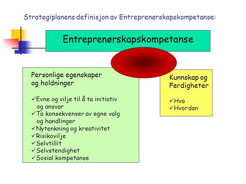 Entreprenørskaps- kriterier  UE har satt opp fem elementer som bør være til stede for å identifisere og kvalitetssikre et læringsopplegg som fremmer elevenes entreprenørskapskompetanse  Kreativitet  Tverrfaglighet  Aktiv læring  Samarbeid skole/lokalsamfunn  Verdiskaping
