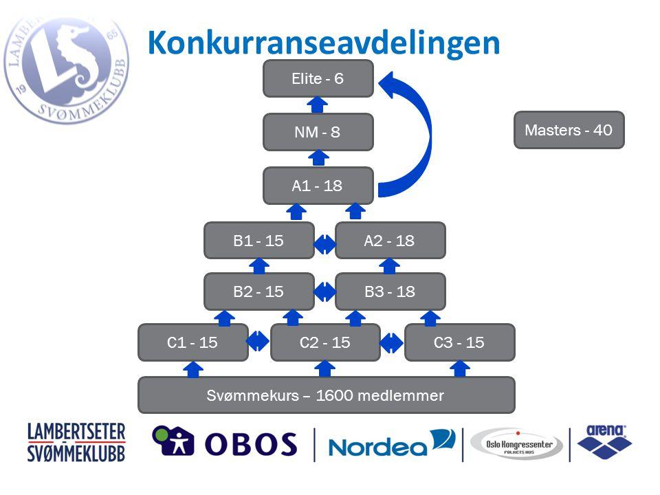 Konkurranseavdelingen B3 - 18B2 - 15 A2 - 18B1 - 15 A1 - 18 NM - 8 Elite - 6 C1 - 15C2 - 15C3 - 15 Svømmekurs – 1600 medlemmer Masters - 40