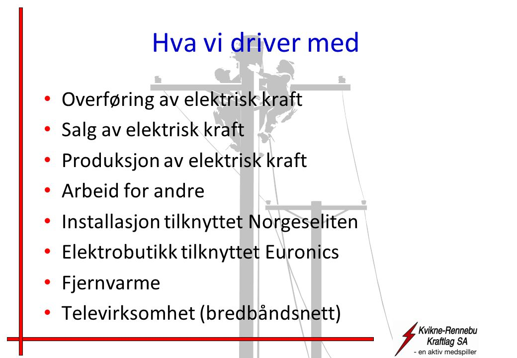 Hva vi driver med • Overføring av elektrisk kraft • Salg av elektrisk kraft • Produksjon av elektrisk kraft • Arbeid for andre • Installasjon tilknyttet Norgeseliten • Elektrobutikk tilknyttet Euronics • Fjernvarme • Televirksomhet (bredbåndsnett)