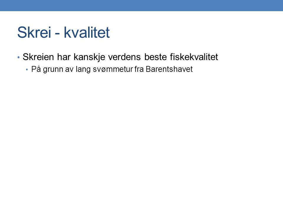 Skrei - kvalitet • Skreien har kanskje verdens beste fiskekvalitet • På grunn av lang svømmetur fra Barentshavet