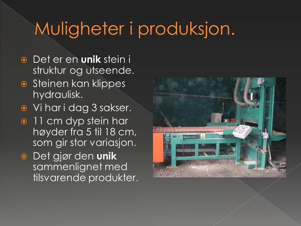  Arne Giskeødegård, daglig leder › anleggsgartnermester › 20 års erfaring med å bruke naturstein › Har sertifikat for boring, sprenging m.m.