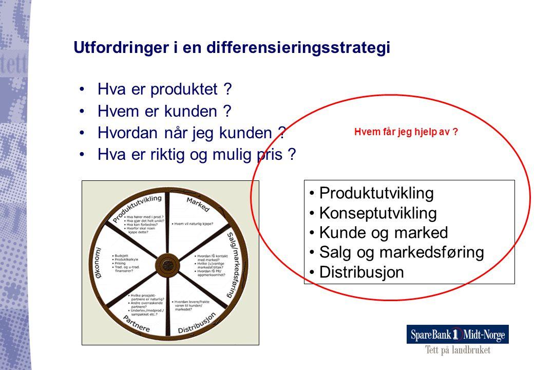 •Hva er produktet ? •Hvem er kunden ? •Hvordan når jeg kunden ? •Hva er riktig og mulig pris ? Utfordringer i en differensieringsstrategi • Produktutv