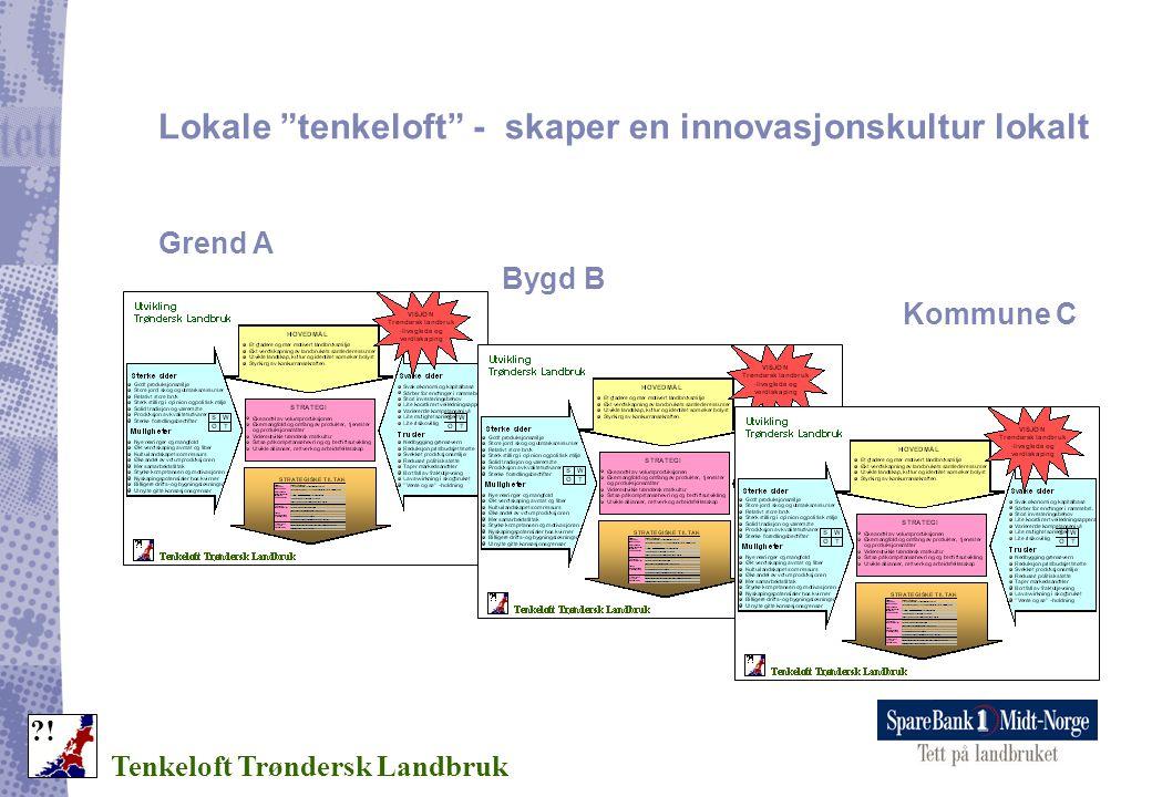 """Lokale """"tenkeloft"""" - skaper en innovasjonskultur lokalt Grend A Bygd B Kommune C Tenkeloft Trøndersk Landbruk ?!"""