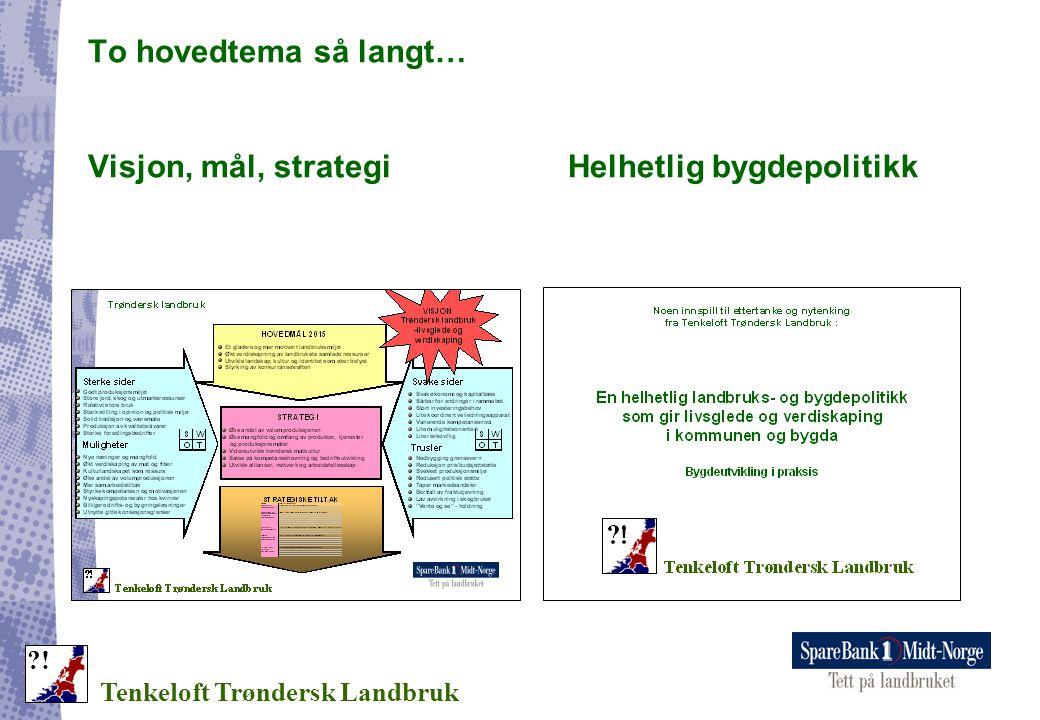 To hovedtema så langt… Visjon, mål, strategiHelhetlig bygdepolitikk Tenkeloft Trøndersk Landbruk ?!