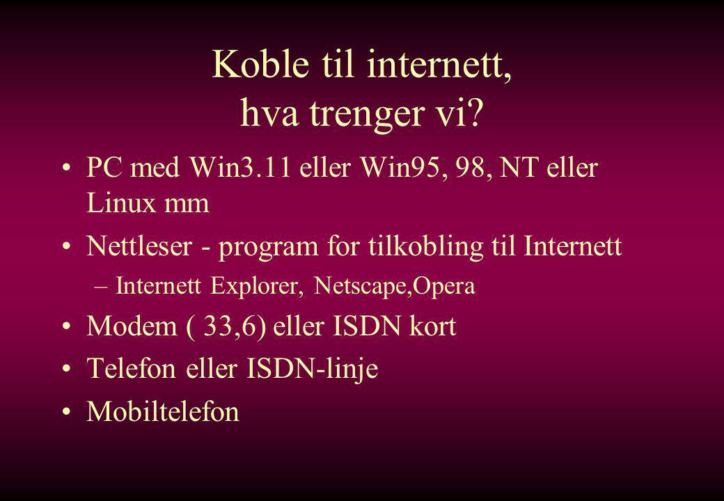 Hva er WWW.