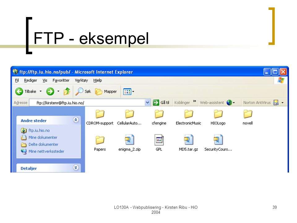 LO130A - Webpublisering - Kirsten Ribu - HiO 2004 39 FTP - eksempel
