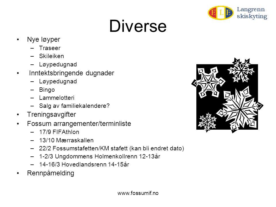 www.fossumif.no Diverse •Nye løyper –Traseer –Skileiken –Løypedugnad • Inntektsbringende dugnader –Løypedugnad –Bingo –Lammelotteri –Salg av familieka