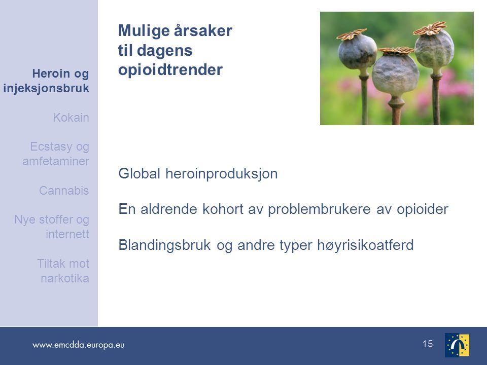15 Global heroinproduksjon En aldrende kohort av problembrukere av opioider Blandingsbruk og andre typer høyrisikoatferd Mulige årsaker til dagens opi