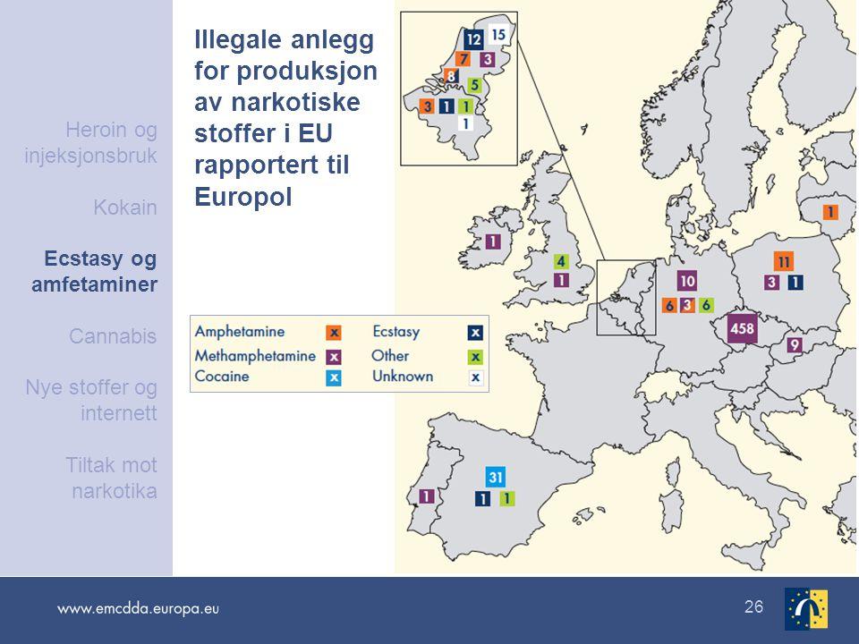 26 Illegale anlegg for produksjon av narkotiske stoffer i EU rapportert til Europol Heroin og injeksjonsbruk Kokain Ecstasy og amfetaminer Cannabis Ny