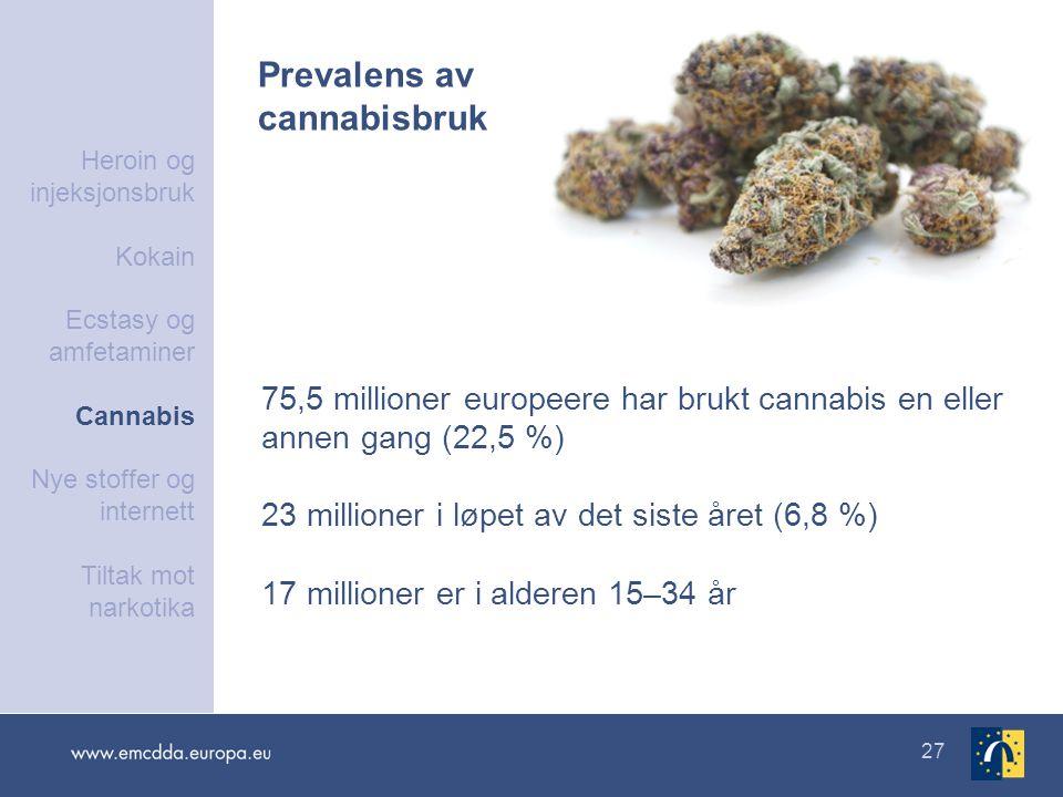 27 75,5 millioner europeere har brukt cannabis en eller annen gang (22,5 %) 23 millioner i løpet av det siste året (6,8 %) 17 millioner er i alderen 1